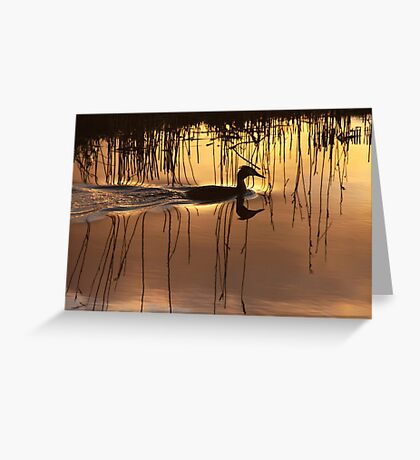 Great Crested Grebe in Silhouette Greeting Card