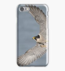 Peregrine Falcon iPhone Case/Skin