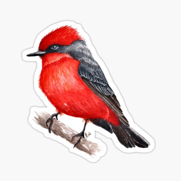 Vermillion Flycatcher Sticker