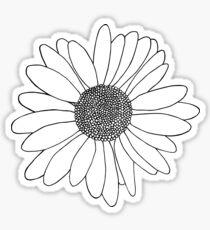 Daisy Boarder Sticker