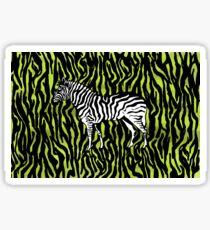 Zebra - animal colour pop art Sticker