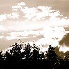 Hatfield Fiery Sunset by skyhat