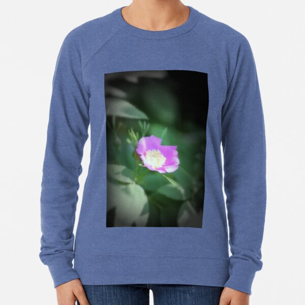 Old fashioned pink rose, near Trojan pond, Oregon Lightweight Sweatshirt