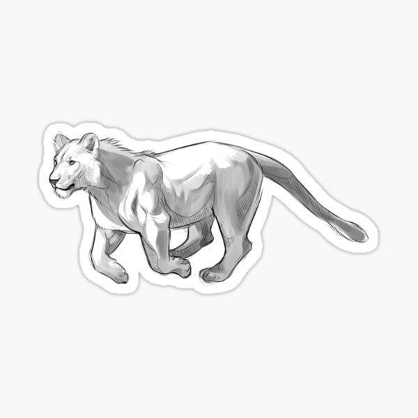 Young lion sticker Sticker