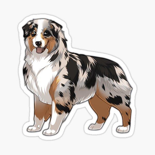 Merle Aussie sticker Sticker