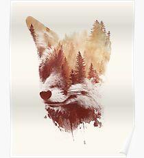 Blind fox Poster