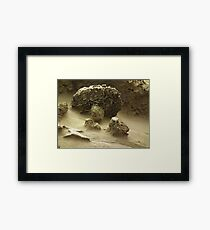 Mycological Geological Framed Print