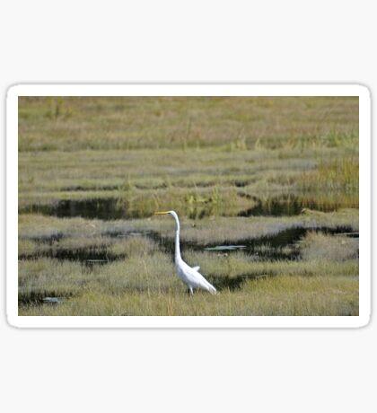 Great Egret Sticker