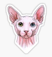 Sphynx cat portrait Sticker