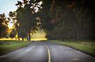 Sunrise Mist by Yannik Hay