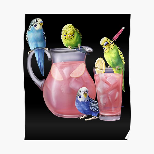 Parakeets And Pink Lemonade Budgies With A Glass Poster