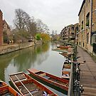 Along the Cam by Harry Oldmeadow