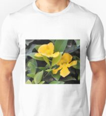 YELLOW TRUMPET VINE OR CATS CLAW T-Shirt