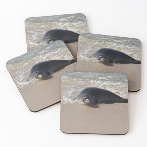 Hawaiian Seal Coasters (Set of 4)