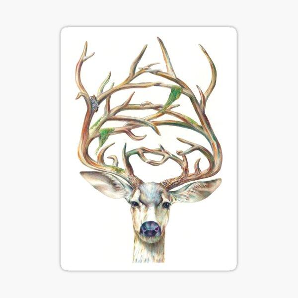 Buck Sticker