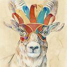 Bighorn Sheep by Brandon Keehner