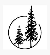 Two Simple Trees in a Circle Photographic Print