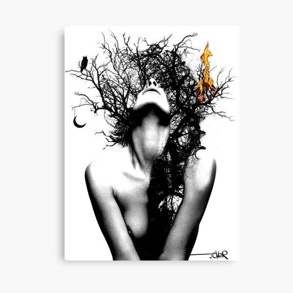 wisdom & fire Canvas Print