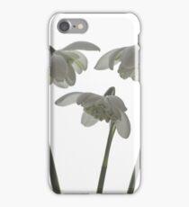 Galanthus nivalis flore pleno iPhone Case/Skin
