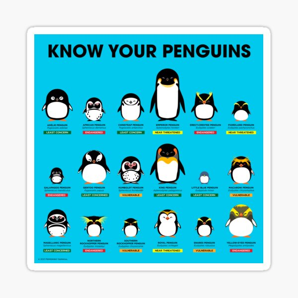 Know Your Penguins Sticker