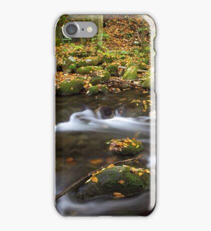 Silken Sensation iPhone Case/Skin