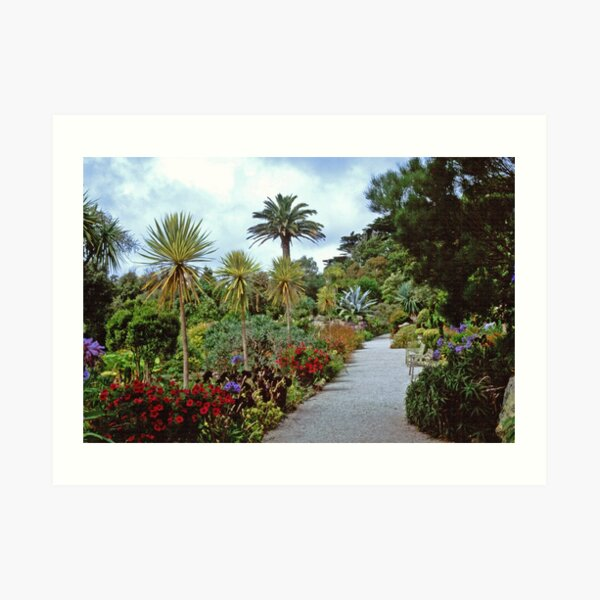Abbey Gardens, Tresco Art Print