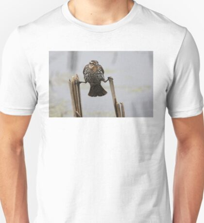 Wings...don't fail me now! - Red-Winged Blackbird T-Shirt