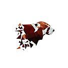 Red Panda I by frauargh