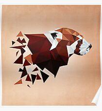 Red Panda II Poster