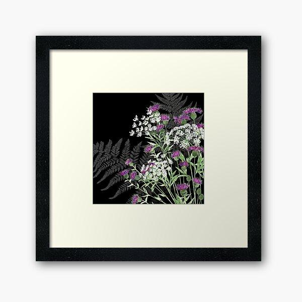 Wild Flowers - Knapweed, Ammi & Bracken Ferns Framed Art Print
