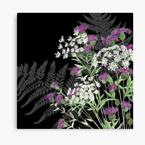 Wild Flowers - Knapweed, Ammi & Bracken Ferns Canvas Print