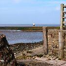 Gateway to the River Lune by mikebov