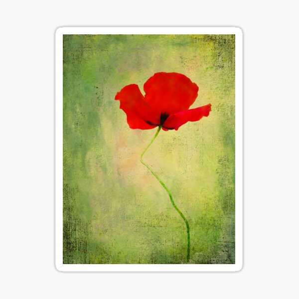 """Poppy (from """"Painted flowers"""" collection) Sticker"""