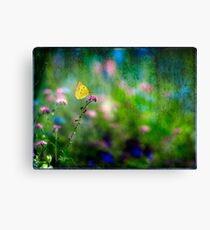 Yellow Butterfly on Pink Blossom Canvas Print