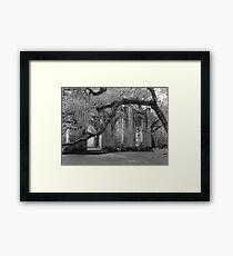 Old Sheldon Church Ruins Framed Print