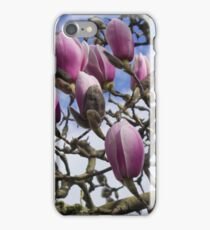 Pink Rhododendron Blooms about to open iPhone Case/Skin