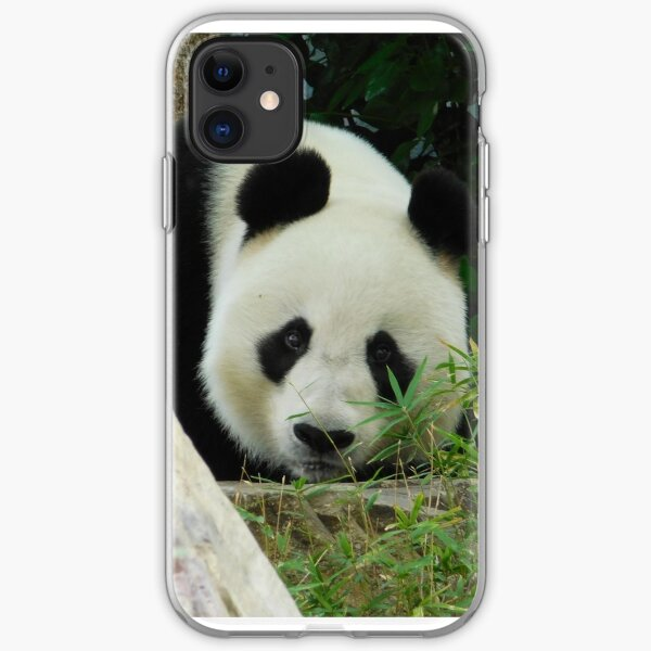 Wang Wang the panda iPhone Soft Case