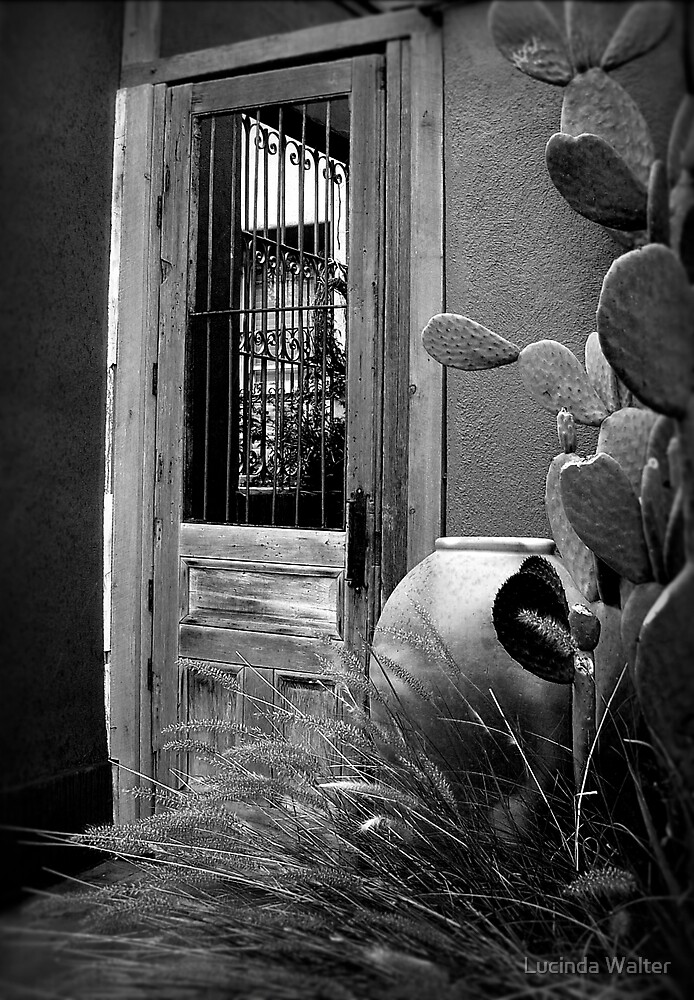 Tucson Door ~ Black & White by Lucinda Walter