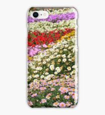 Colorful rows of flowers in the park. iPhone Case/Skin