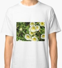 Yellow light flowers in the park. Classic T-Shirt