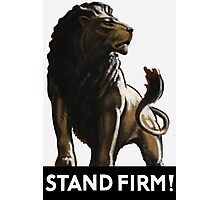 Stand Firm Lion Photographic Print