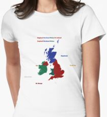 UK infographic Womens Fitted T-Shirt