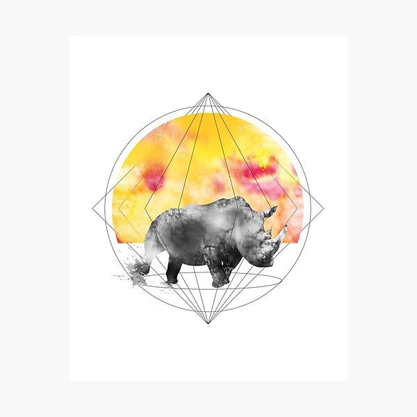 sunset rhino Photographic Print