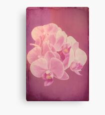 Photo art antiqued pink orchid Canvas Print