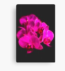 Photo art pink orchid Canvas Print