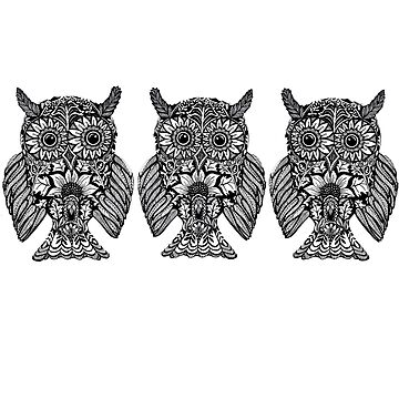 Lovely Little Owl Triplets by DecorativeD