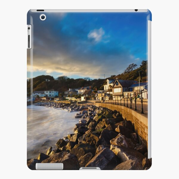 Steephill Cove Gold iPad Snap Case