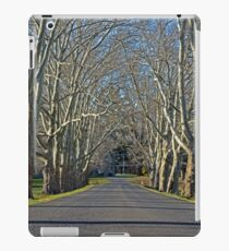 Mercer Drive iPad Case/Skin