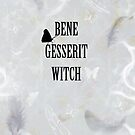 Bene Gesserit Witch Grey by JuniperMe