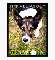 Terrier Obsession: It's All About The Ball Photographic Print